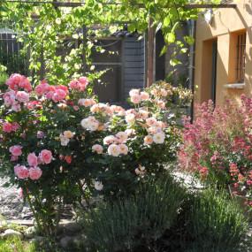 Cette profusion de fleurs aux coloris pastels assortis permet de créer une atmosphère bucolique aux parfums délicats.