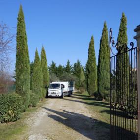 Cyprès de Provence qui une fois taillés soulignent avec un supplément de raffinement et de majesté l'entrée du domaine.